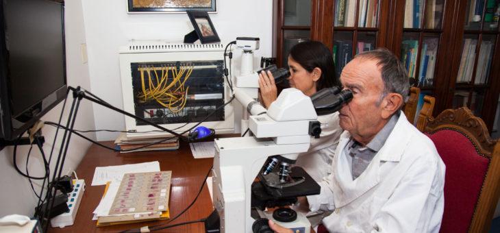 L'Anatomo-patologo e l'Anatomia Patologica